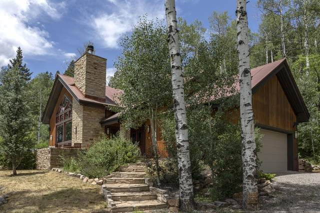295 Sky Mountain Ranch Rd, Placerville, CO 81430 (MLS #38372) :: Telluride Real Estate Corp.