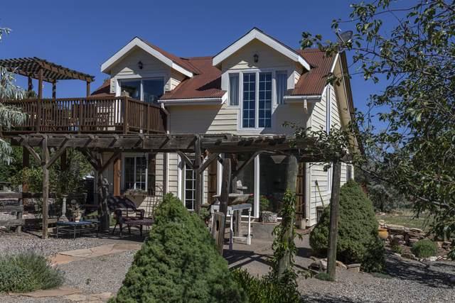 1225 Mountain View Lane, Norwood, CO 81423 (MLS #38584) :: Telluride Real Estate Corp.