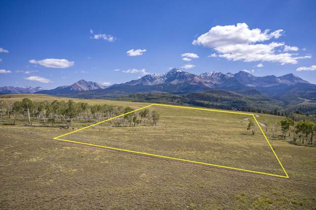 TBD E Anderson Road #93, Placerville, CO 81430 (MLS #38712) :: Compass