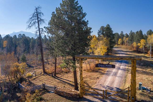 Lot 1 Eagles Nest Road #1, Placerville, CO 81430 (MLS #38868) :: Telluride Standard
