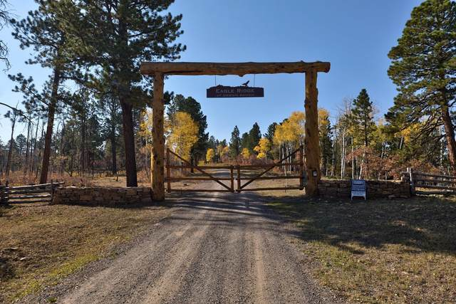 Lot 2 Eagles Nest Road #2, Placerville, CO 81430 (MLS #38869) :: Compass