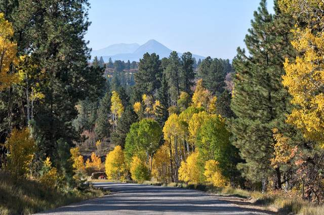 Lot 5 Sage Grouse Road #5, Placerville, CO 81430 (MLS #38872) :: Compass