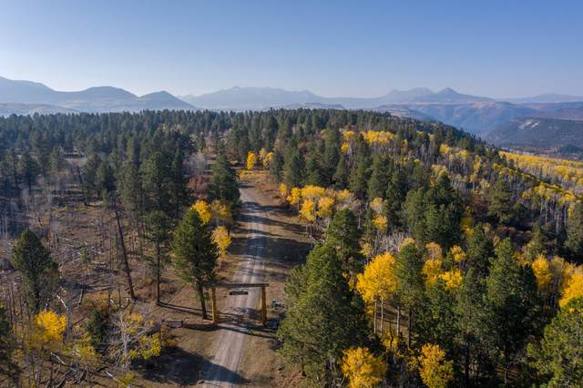 Lot 6 Sage Grouse Road #6, Placerville, CO 81430 (MLS #38873) :: Compass