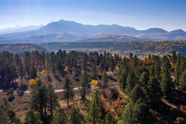 Lot 10 Eagles Nest Road #10, Placerville, CO 81430 (MLS #38875) :: Compass