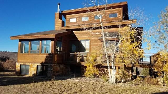1965 High Bluff Drive, Placerville, CO 81430 (MLS #38945) :: Telluride Properties