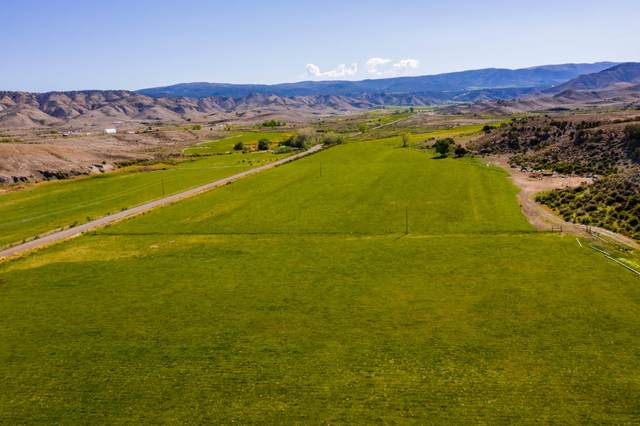 70456 Miguel Road, Montrose, CO 81401 (MLS #38971) :: Telluride Real Estate Corp.