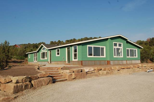 195 Spruce Drive, Norwood, CO 81423 (MLS #39375) :: Compass