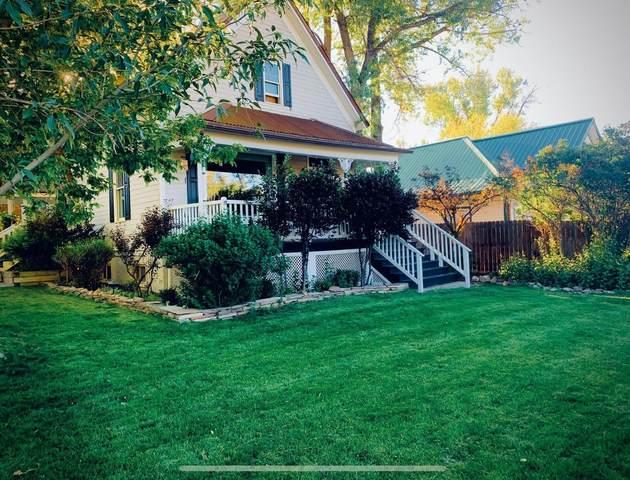 195 S Laura Street, Ridgway, CO 81432 (MLS #39446) :: Telluride Properties
