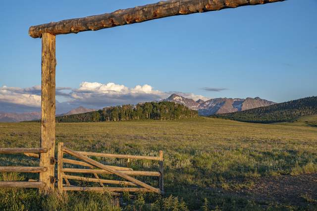 tbd County Road P52 (1, 4, 6, Sbb 8, Placerville, CO 81430 (MLS #39463) :: Telluride Real Estate Corp.