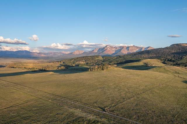 tbd County Road P52 (1, 3-7, SBB), Placerville, CO 81430 (MLS #39464) :: Telluride Real Estate Corp.