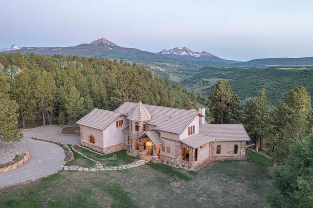 71 South Point Road, Placerville, CO 81430 (MLS #39572) :: Compass