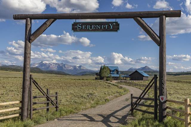 2335 County Road X48, Placerville, CO 81430 (MLS #39638) :: Telluride Standard