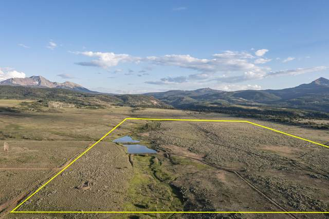 tbd County Road 48L Road 'Clark 207', Placerville, CO 81430 (MLS #39709) :: Compass