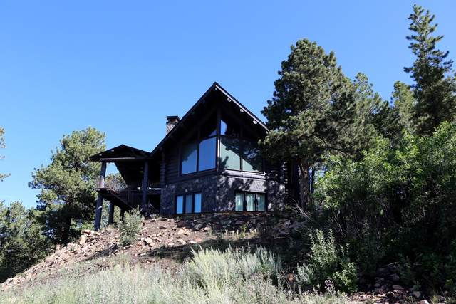 177 County Road 61V Road, Placerville, CO 81430 (MLS #39807) :: Telluride Properties