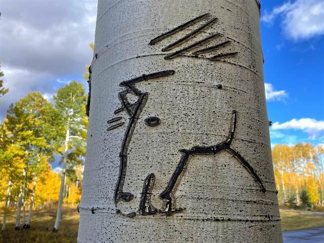 Lot 20 Elk Run Road, Telluride, CO 81435 (MLS #39987) :: Telluride Real Estate Corp.