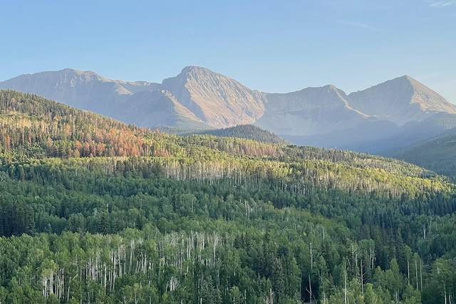 TBD Posey Road A, Placerville, CO 81430 (MLS #39998) :: Telluride Real Estate Corp.