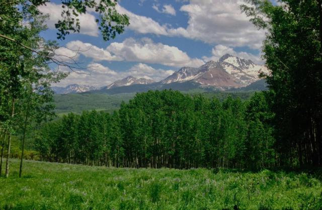 Lot 21 Little Cone Ranch Rd #21, Placerville, CO 81430 (MLS #31306) :: Telluride Properties