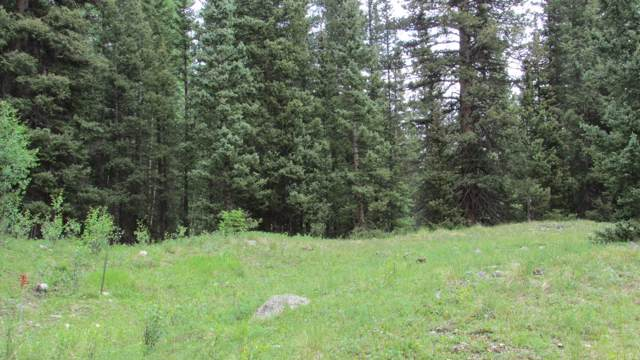 SITE 27 Backwoods, Ophir, CO 81426 (MLS #32632) :: Telluride Real Estate Corp.