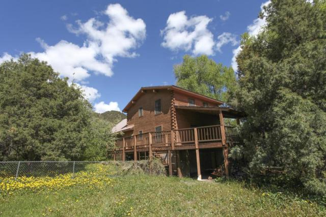 219 Juniper Village Drive, Placerville, CO 81430 (MLS #34898) :: Telluride Properties