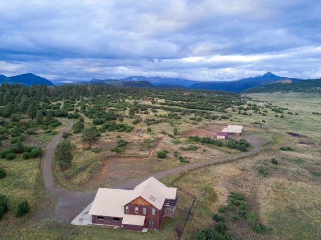 1501 High Bluff Drive, Placerville, CO 81430 (MLS #35121) :: Telluride Properties