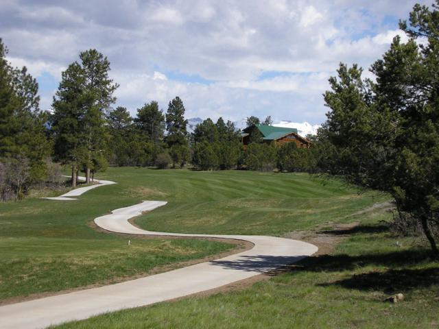 1233 Marmot Drive #220, Ridgway, CO 81432 (MLS #35189) :: Telluride Properties