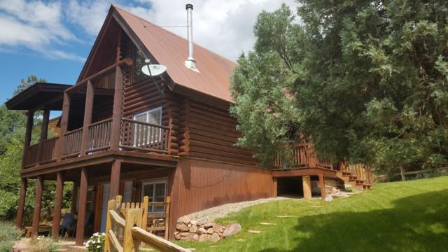 49 Redcliffe, Placerville, CO 81430 (MLS #35367) :: Telluride Properties