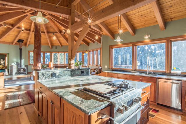 1415 N Trout Lake Road, Ophir, CO 81426 (MLS #36210) :: Telluride Properties