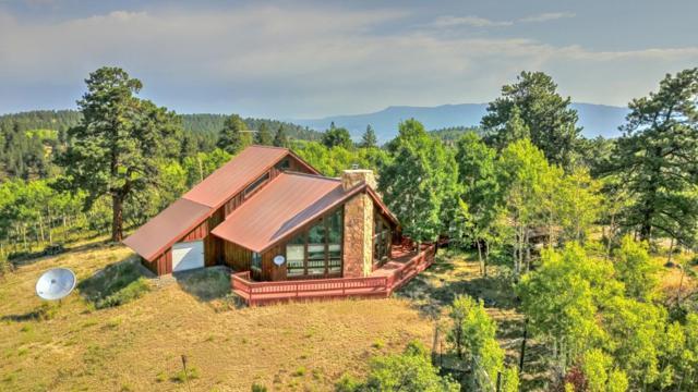 1623 Aspen Drive, Ridgway, CO 81432 (MLS #36245) :: Telluride Properties