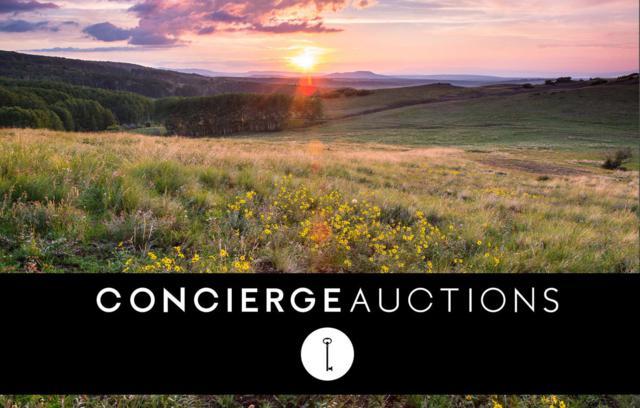 Specie Wilderness Ranch North Parcel, Placerville, CO 81430 (MLS #36267) :: Telluride Properties