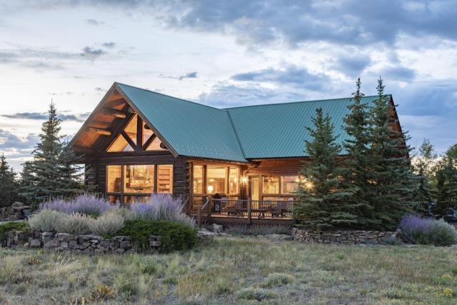 509 Elam Point Drive, Placerville, CO 81430 (MLS #36348) :: Telluride Properties