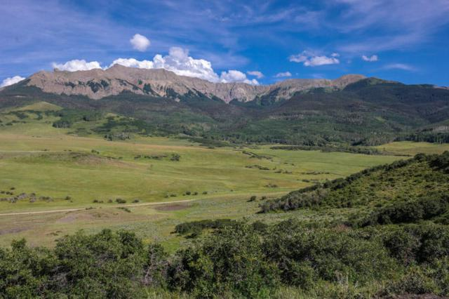 TBD County Road 59T, Placerville, CO 81430 (MLS #36541) :: Telluride Properties