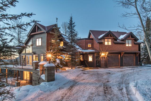 849 Saddle Horn Lane, Telluride, CO 81435 (MLS #36623) :: Telluride Real Estate Corp.