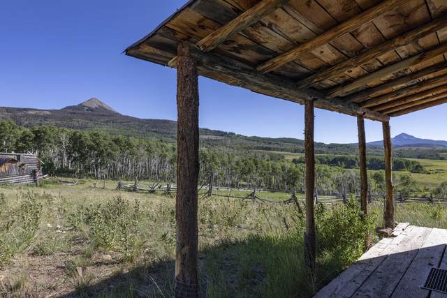 tbd County Road P52 Tract 2, Placerville, CO 81430 (MLS #36675) :: Compass