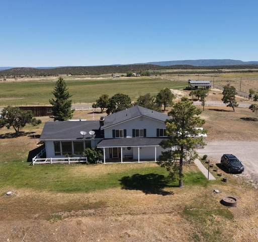 967 County Rd 43Zn, Norwood, CO 81423 (MLS #36875) :: Compass