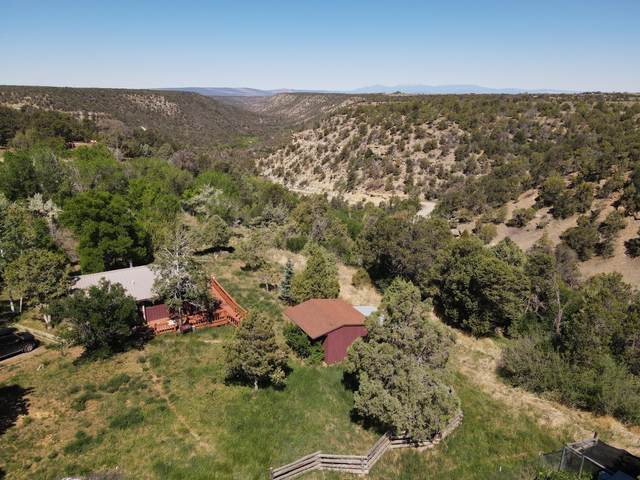 1323 County Road W35, Norwood, CO 81423 (MLS #37097) :: Compass