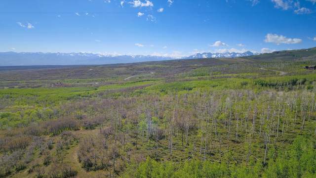 291 Cornerstone Trail, Montrose, CO 81403 (MLS #38018) :: Telluride Properties