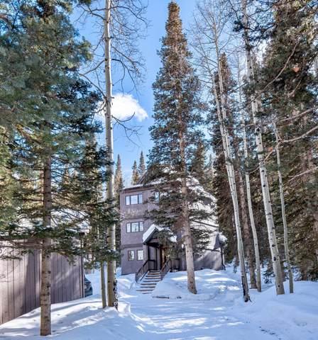 764 Fox Farm Road, Telluride, CO 81435 (MLS #38022) :: Telluride Properties
