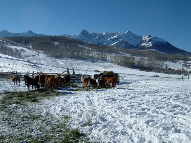 12665 Snow Drift Ranch,, Placerville, CO 81430 (MLS #38700) :: Compass
