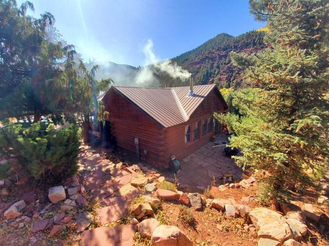158 Red Rock Trail, Placerville, CO 81430 (MLS #38801) :: Compass