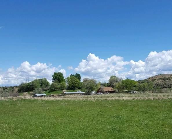64360 Ranger Road, Montrose, CO 81403 (MLS #39210) :: Telluride Standard
