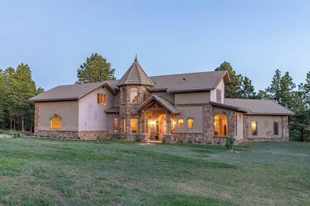 71 South Point Road, Placerville, CO 81430 (MLS #39572) :: Telluride Properties