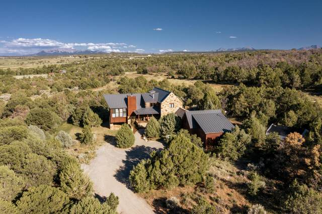 161 Gurley Drive, Norwood, CO 81423 (MLS #39686) :: Telluride Real Estate Corp.