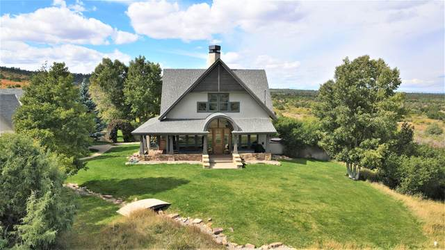 4065 County Road 44Zs, Norwood, CO 81423 (MLS #40059) :: Telluride Real Estate Corp.