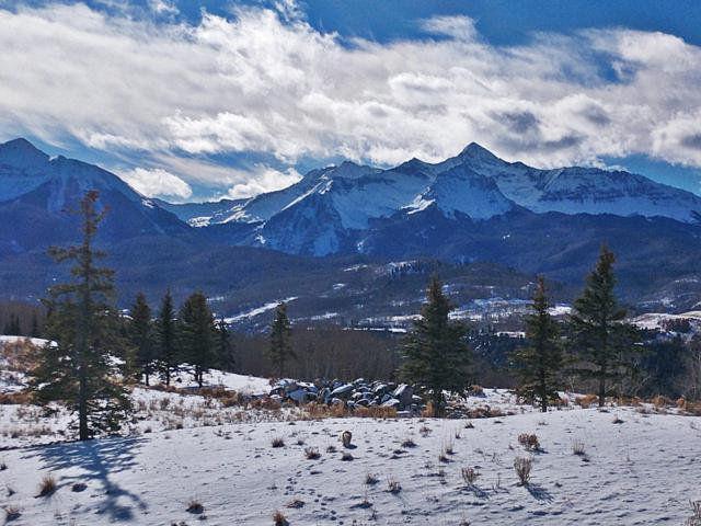 556A Victoria Point Drive, Telluride, CO 81435 (MLS #24074) :: Telluride Properties
