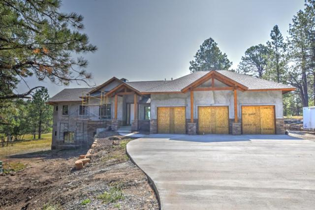 284 S Badger Trail, Ridgway, CO 81432 (MLS #35128) :: Telluride Properties