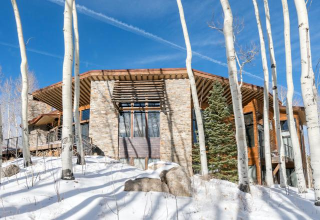 1327 Elk Run, Telluride, CO 81435 (MLS #36533) :: Nevasca Realty