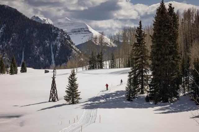 Address Not Published, Telluride, CO 81435 (MLS #36555) :: Compass