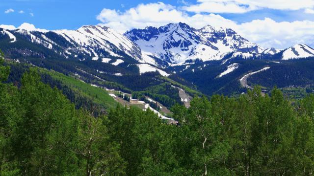 177 Two Creeks Drive #2, Telluride, CO 81435 (MLS #36708) :: Compass