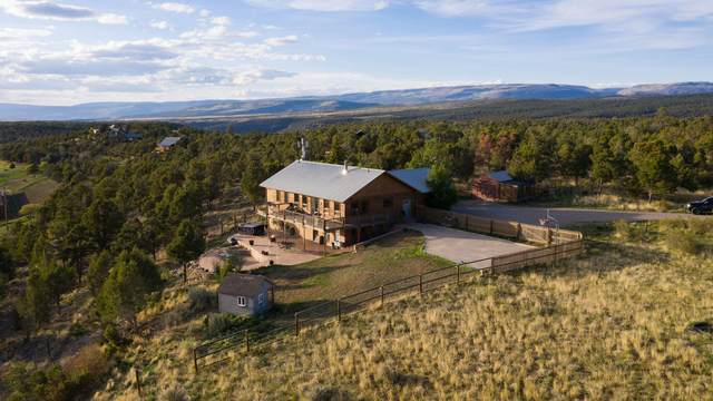 1691 County Road 4Zn, Norwood, CO 81423 (MLS #37225) :: Telluride Real Estate Corp.