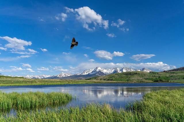 tbd East Specie Mesa, Placerville, CO 81430 (MLS #38717) :: Telluride Properties